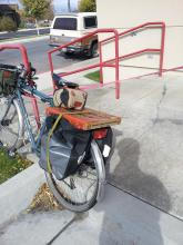 Large boxed pizza on a narrow rear cargo rack with panniers (fall 2012)